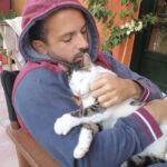 Η γάτα μου δεν θέλει αγκαλιά